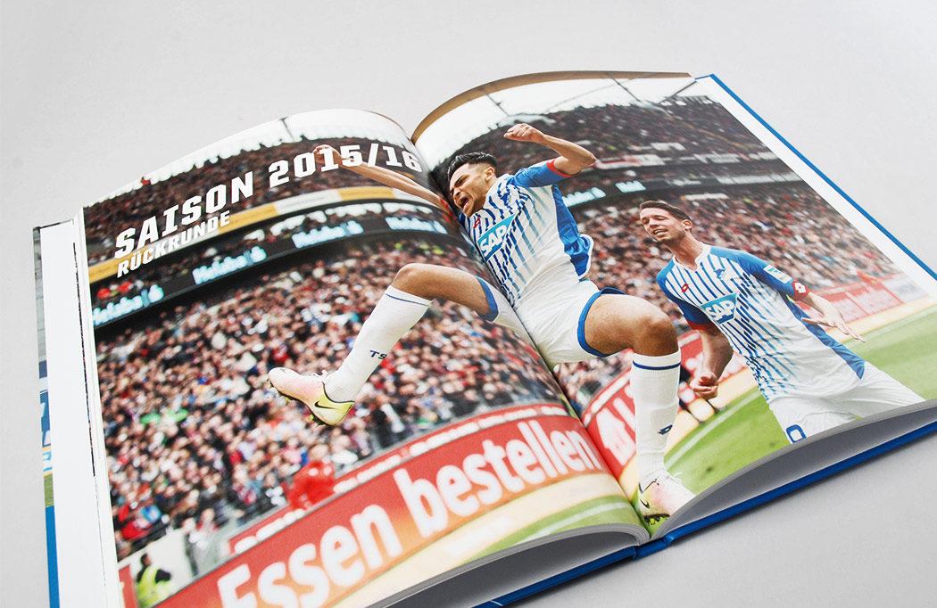 Spielberichte der Saison 2015/16 des TSG 1899 Hoffenheim